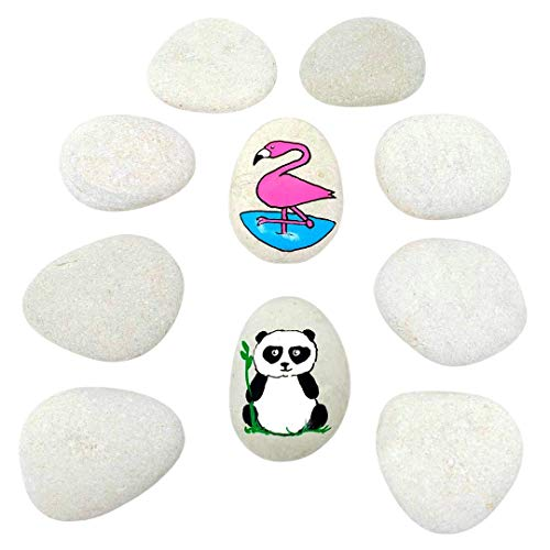 Capcouriers Rocks for Painting 12 Painting Rocks for Rock Painting About 2 inches in Length