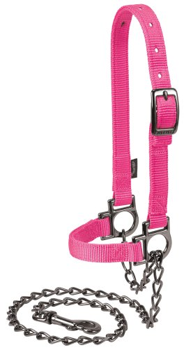 - Weaver Leather Livestock Nylon Adjustable Sheep Halter with Chain Lead