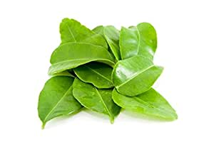 (2 Oz.) Fresh ORGANIC Kaffir Lime Leaves (Thai Lime Leaves) | FREE First Class Shipping from California