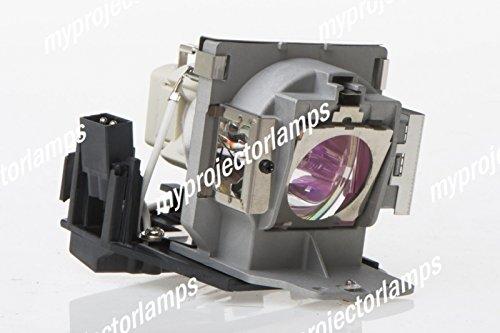 交換用プロジェクターランプ ベンキュー 5J.07E01.001   B00PB4OHFO
