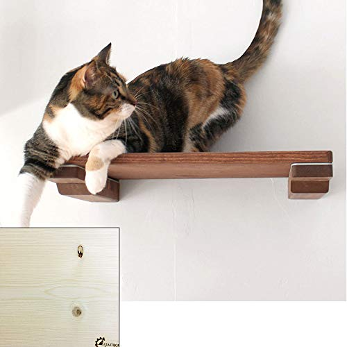 CatastrophiCreations Cat Mod 18″ Shelf Handcrafted Elevated Wall, Unfinished, One Size Review
