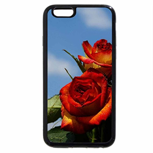 iPhone 6S / iPhone 6 Case (Black) Red Yellow Roses
