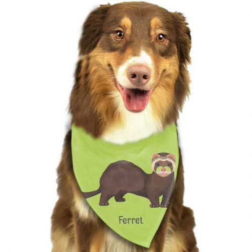 Pet Dog Cat Puppy Bandana Bibs Lovely Ferret Double Cotton Triangle Scarfs for Baby Head Scarfs Accessories for Pet Pack