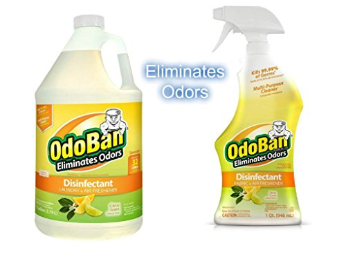 OdoBan Ready-to-Use 32oz Spray Bottle and 1 Gal Concentrate, Citrus Scent