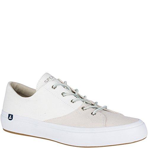 Sperry Top-sider Haven Chambray Sneaker Stein / Lysgrå