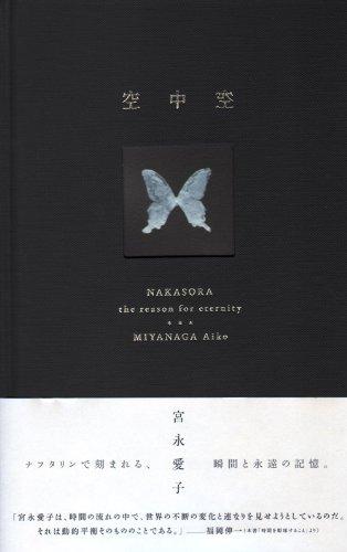 宮永愛子作品集 空中空(なかそら)