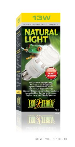 Exo Terra Repti-Glo 2.0 Compact Fluorescent Full Spectrum Terrarium Lamp, 13-Watt (Natural Light)