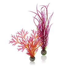 biOrb Red/Pink Plants, 2 Pack