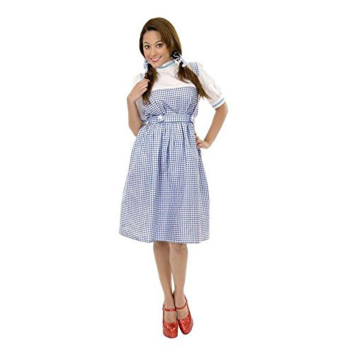 Dorothy of Oz Teen Costume (Size: Teen 14-16) (2)