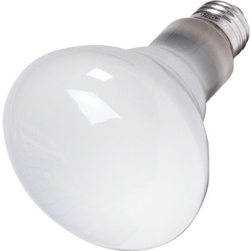 (Philips 65W BR-30 Reflector Flood Light Bulb, E26 Medium Base, 620 Lumens, Indoor, 12 Pack)