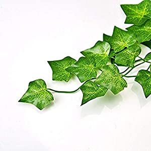 A-Decor 84 ft-12 Pack Artificial Ivy Vine Hanging Garland Fake Foliage Flowers Leaf Plants Home Garden Greenery Life-Like English Poison Ivy Wedding Party Strands Indoor Outdoor Wall Decor, Green 4