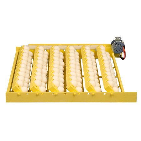 Universal Egg Racks - Egg Turner with Universal & Quail Egg Racks