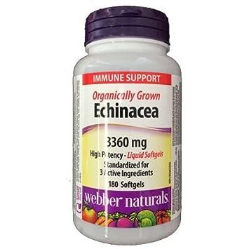 Webber Naturals Echinacea 3360mg, 180 softgels