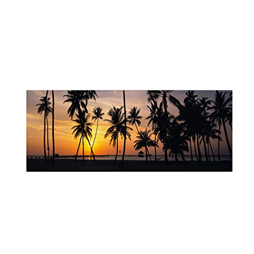 picture of Trademark Fine Art Palm Dream Artwork by David Evans, 16 by 47-Inch