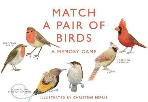 Match a Pair of Birds: A Memory (Match Stationery Books)