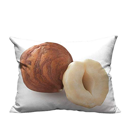 YouXianHome Lovely Cushion Covers Hazelnuts Isolate on White backgroun Closeup Nuts Resists Stains(Double-Sided Printing) 12x16 ()