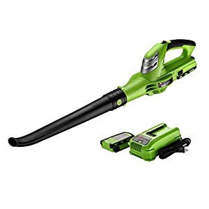 BEST PARTNER BLA18 Leaf 18V Max Lithium Ion Cordless Blower,Battery and Charger Included