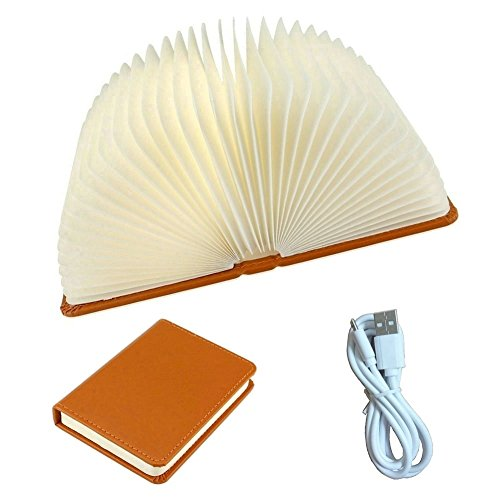 Rose Traditional Torchiere Lamp (USB Rechargeable LED Table Lamps, Folding Book Design Night Lights with Magnetic Book Cover, Awsome & Greative Gift For Friends/Children, Brown Case, Large Size)