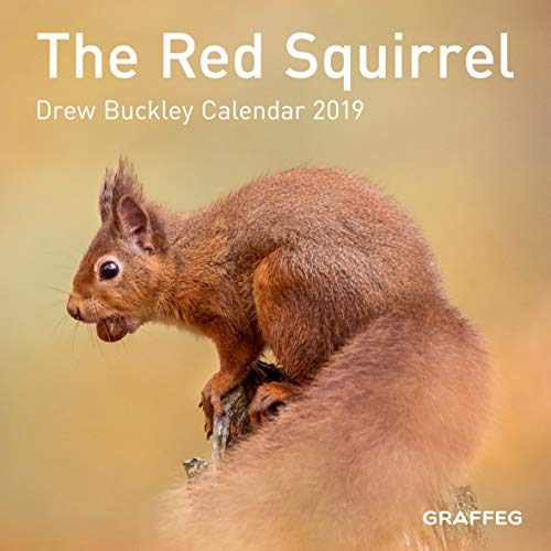 The Red Squirrel Calendar 2019