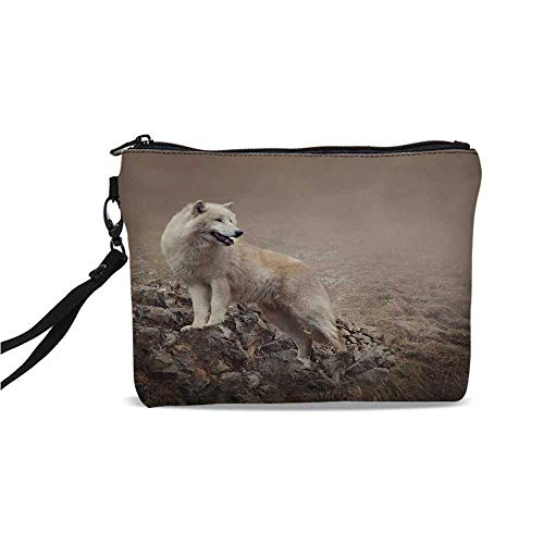 Animal Simple Cosmetic Bag,White Wolf on Rocks at the Night Hazy Misty Weather Wildlife Nature Scenery Print Decorative for Women,9