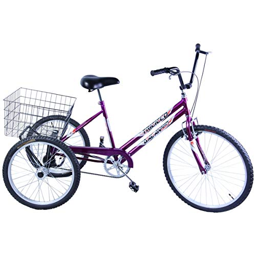 Bicicleta Triciclo Aro 26 cor Violeta