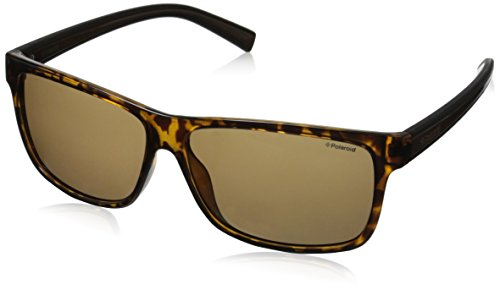 Polaroid Sunglasses Pld2027s Polarized Rectangular Sunglasses, Havana/Brown, 59 mm (Havana Brown Sunglasses)