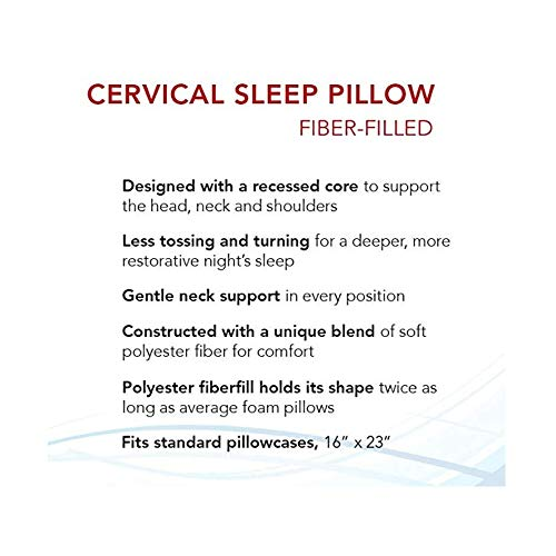 Indented Contour Pillow... Roscoe Cervical Pillow and Neck Pillow For Sleeping