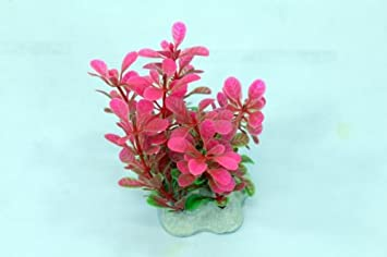 Planta artificial 10 cm Acuario Decoración rosa + verde: Amazon.es: Productos para mascotas