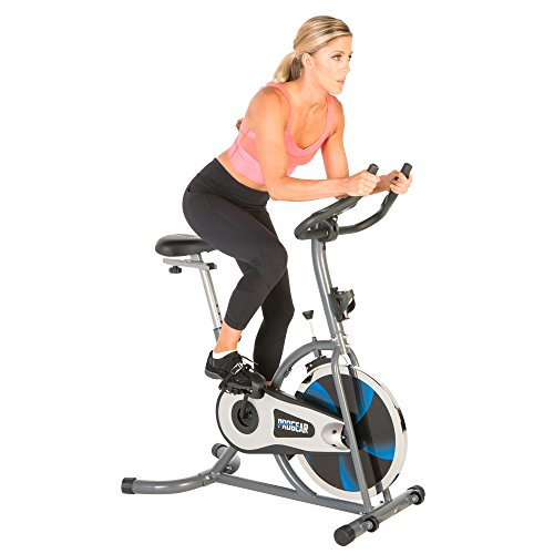ProGear 100S Exercise Bike/ Indoor Training Cycle with Heart Pulse Paradigm Health & Wellness Inc. -- DROPSHIP