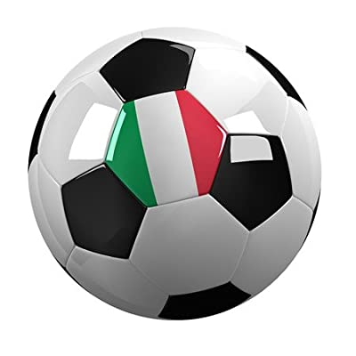 3dRose lsp_157026_2 Soccer Ball with The National Flag of Italy On It Italian Double Toggle Switch