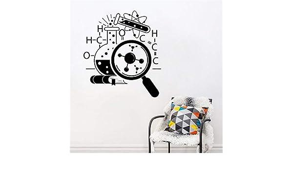 woyaofal Químico científico Pegatinas de Arte para Adolescentes de Pared Dormitorio extraíble decoración del hogar Ciencia Vinilo Pared calcomanía Laboratorio decoración Mural 42x47 cm: Amazon.es: Hogar