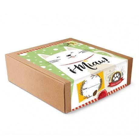 Dimac Happy Box - CAJITA DE Regalos para Gatos: Amazon.es ...