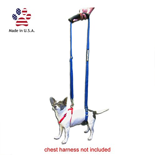 GingerLead Dog Support & Rehabilitation Harness - Mini Sling for Smaller Breeds - Ideal for aging, disabled, or injured dogs needing assistance with their balance and mobility