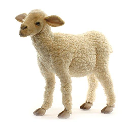 Hansa Life Size Baby Lamb 20