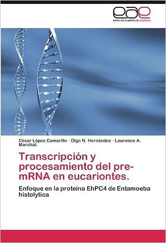 Transcripcion y Procesamiento del Pre-Mrna En Eucariontes ...