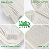 HeloGreen [100 Count] Eco Friendly to Go Containers