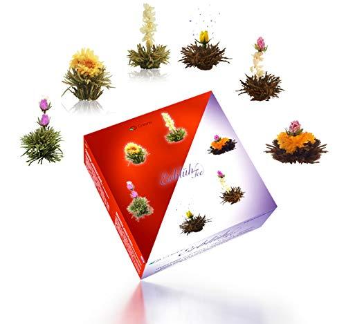 Creano - Mix de Flores de Te - Te de Flores en una Elegante Caja de Regalo | Te blanco y Te negro (6 Tipos diferentes)