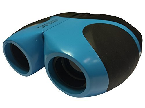 10x22 Best Ranked Top 10 Compact Binoculars for Bird Watching, for Hunting and for Theater. Best Birding Binoculars Compact for West Marine and Astronomy Vision Binoculars for Kids or Children.