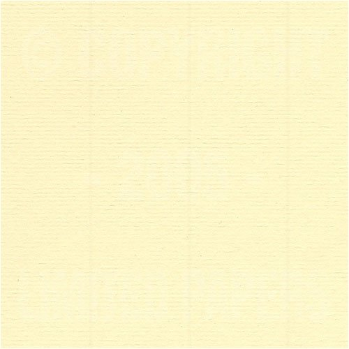 Fox River Select 25 Writing Lamplighter Ivory Laid 24# #10 Envelope 500/pack by FoxRiver