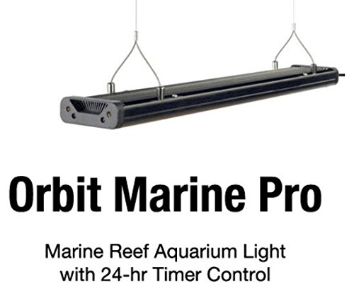 Current USA Single Orbit Marine Pro Hanging Kit 4190 In The UAE See Price