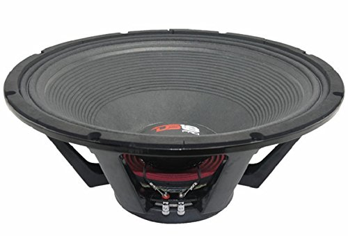 DS18  PRO-BX21 Technologically Advanced 21-Inch 3200 Watts Subwoofer (Ds 18 Subwoofer)