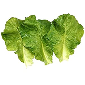 Skyseen 10Pcs Artificial Vegetable Lettuce Leaves Simulation Fake Lifelike for Home Party Kitchen Festival Decoration 1