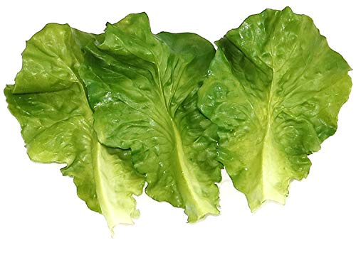 (Skyseen 10Pcs Artificial Vegetable Lettuce Leaves Simulation Fake Lifelike for Home Party Kitchen Festival Decoration)