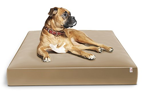 Large Dog Bed for Big Dogs Pet Pillow | Orthopedic Dual Layer Memory Foam Firm Support 44x35x6 Waterproof Liner Extra Washable Cover | Old Dogs, Post Surgery, Hip Dysplasia, Arthritis by OnePet-TwoPet