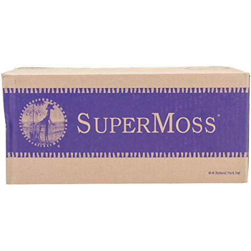Super Moss 21773 Reindeer Moss Preserved, Chartreuse, 3 Pounds ()