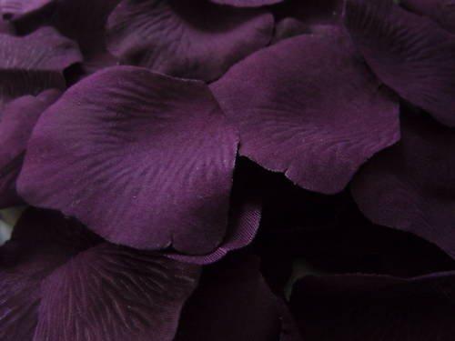 100 deep purple grape silk rose petals confettiwedding amazon 100 deep purple grape silk rose petals confettiwedding amazon kitchen home mightylinksfo