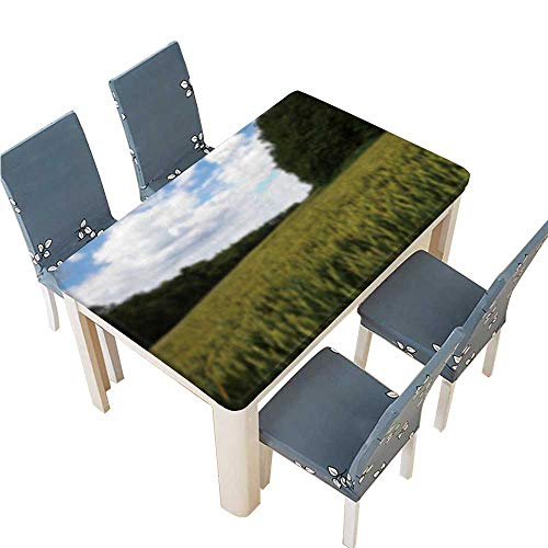 - PINAFORE Fitted Polyester Tablecloth  Wheat Growing in a Field in The chilterns England Out of Washable for Tablecloth W69 x L108 INCH (Elastic Edge)