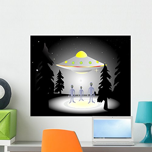 Wallmonkeys Illustration of Aliens and Flying Saucer in the Woods at Night Wall Decal Peel and Stick Graphic WM101171 (24 in W x 19 in H) by Wallmonkeys