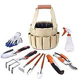 Hgedz Portable Garden Tool Set with Carrying Case, 10 Pcs Stainless Steel Gardening Tool Sets, Including Shovel Sprayer Rake Weeder Trowel Gloves, Gardening Gifts for Women/Men/Kids