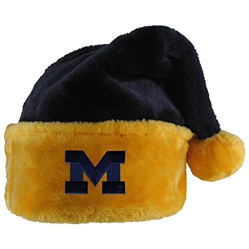 (University of Michigan Santa Hat)